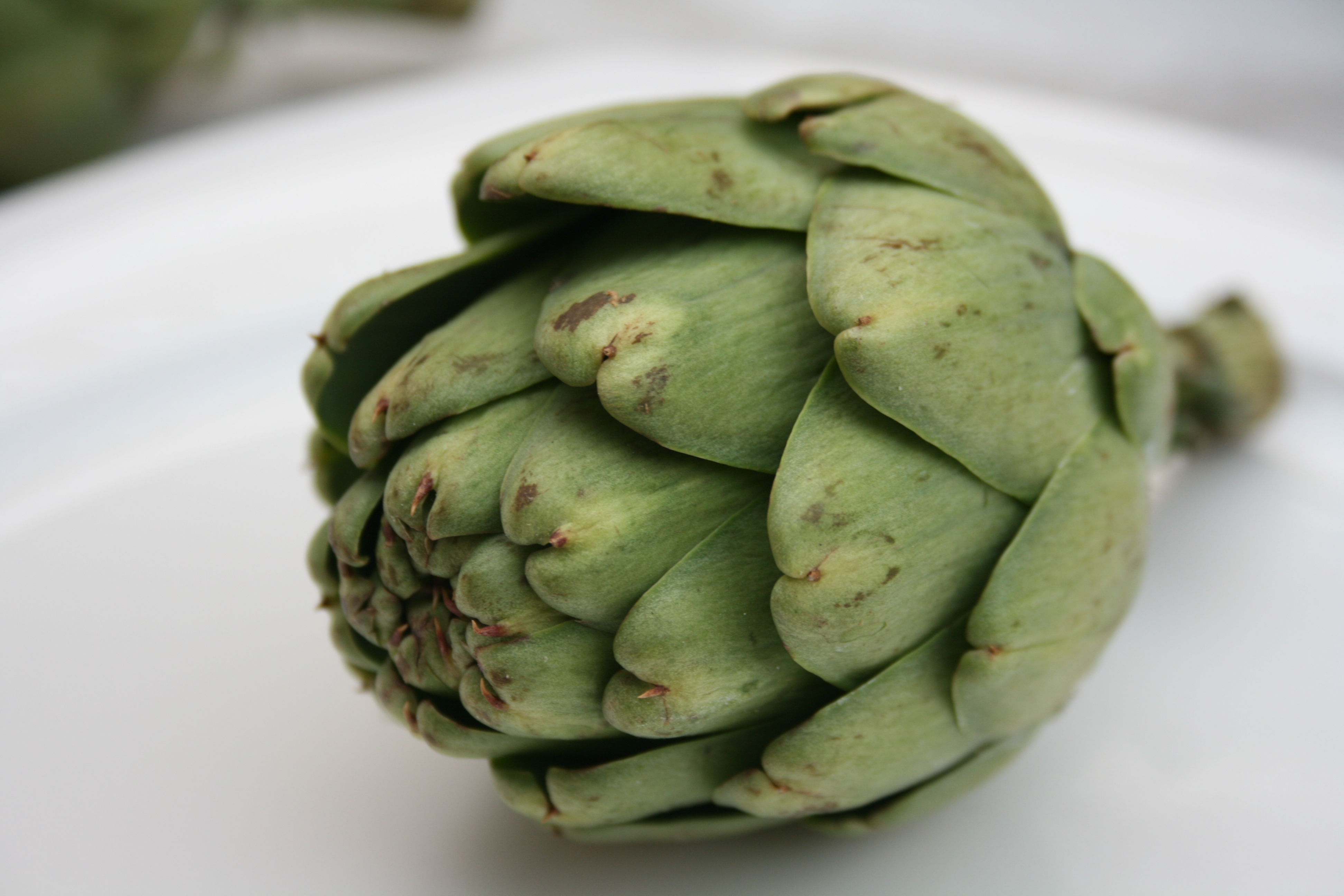 artichoke extract lowers cholesterol and triglycerides