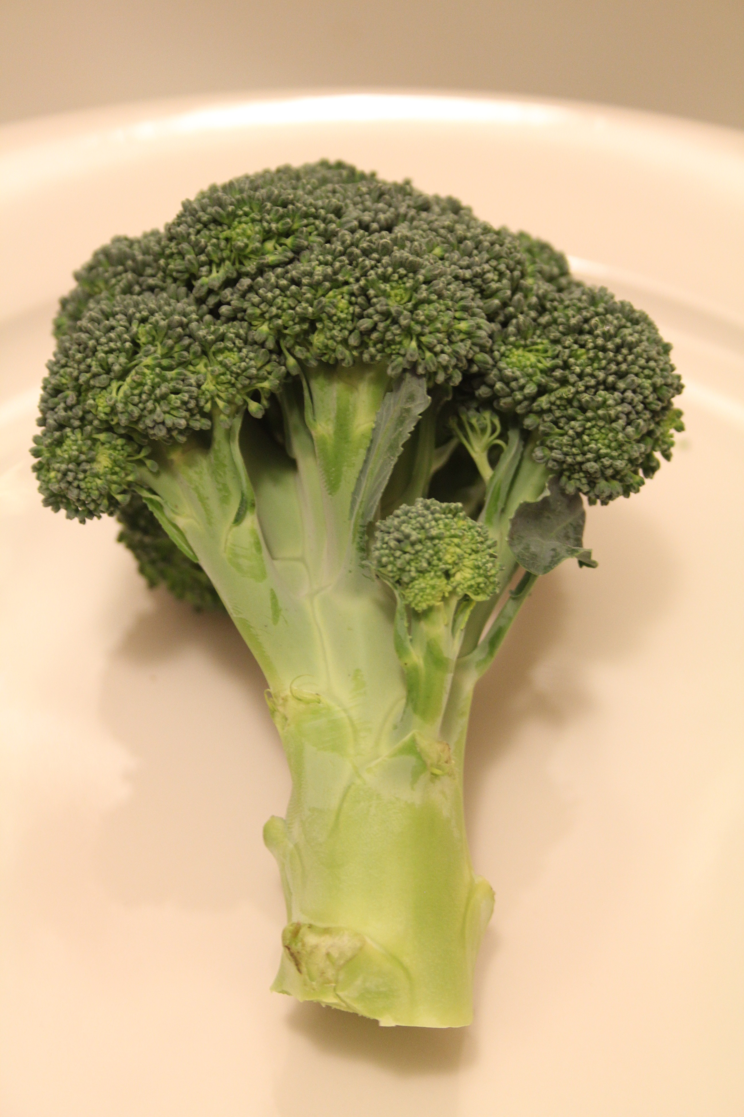 broccoli sprout extract benefits diabetes