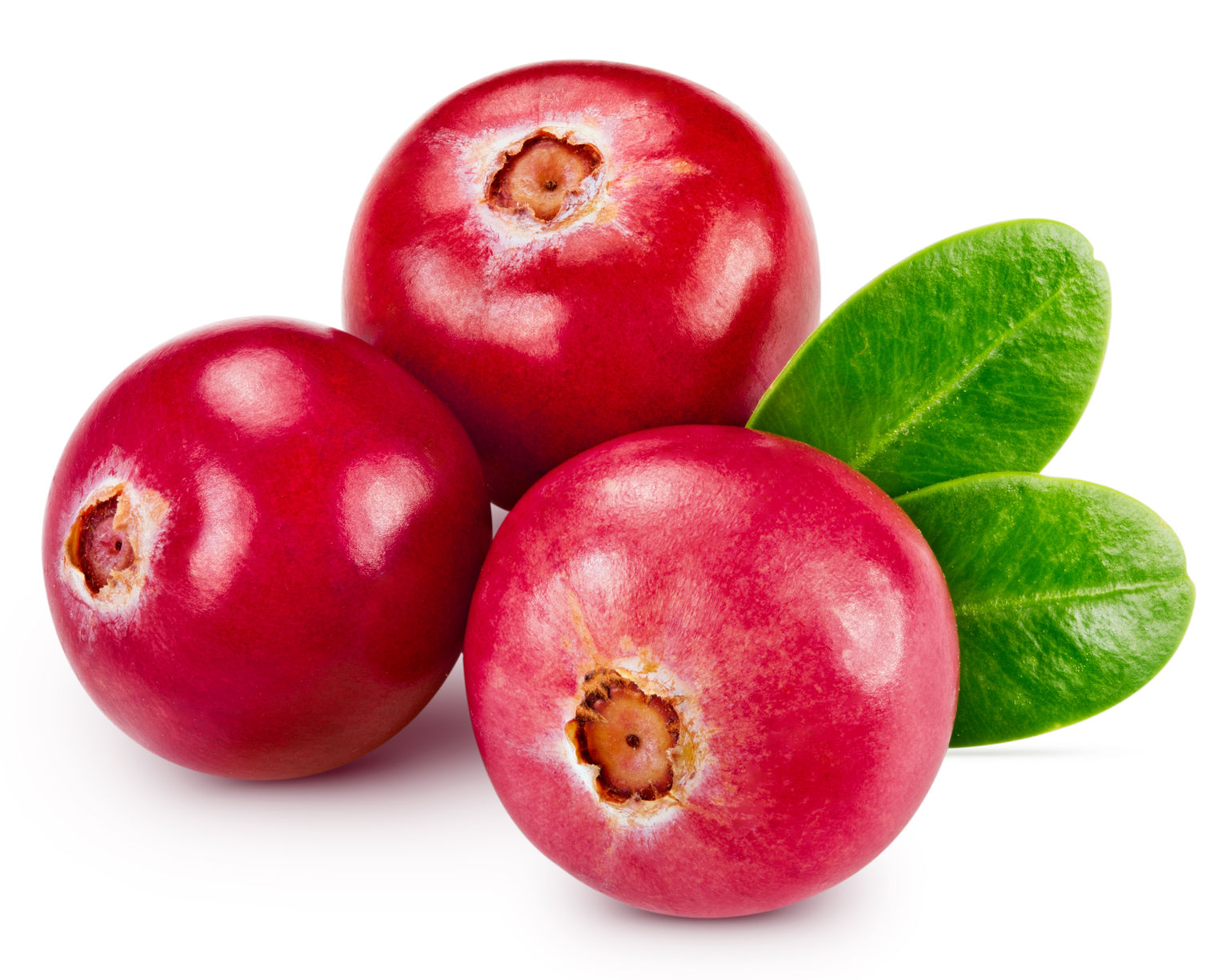 cranberry prevents urinary tract infections from prostate cancer radiation