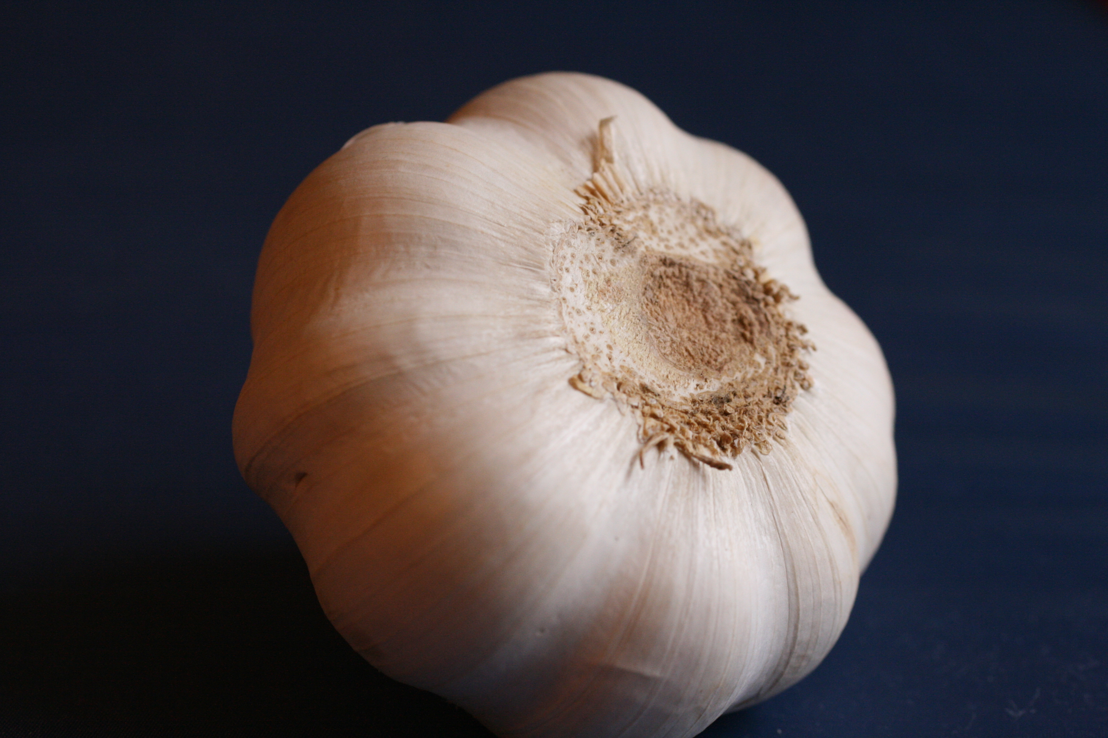 garlic reduces risk of cold
