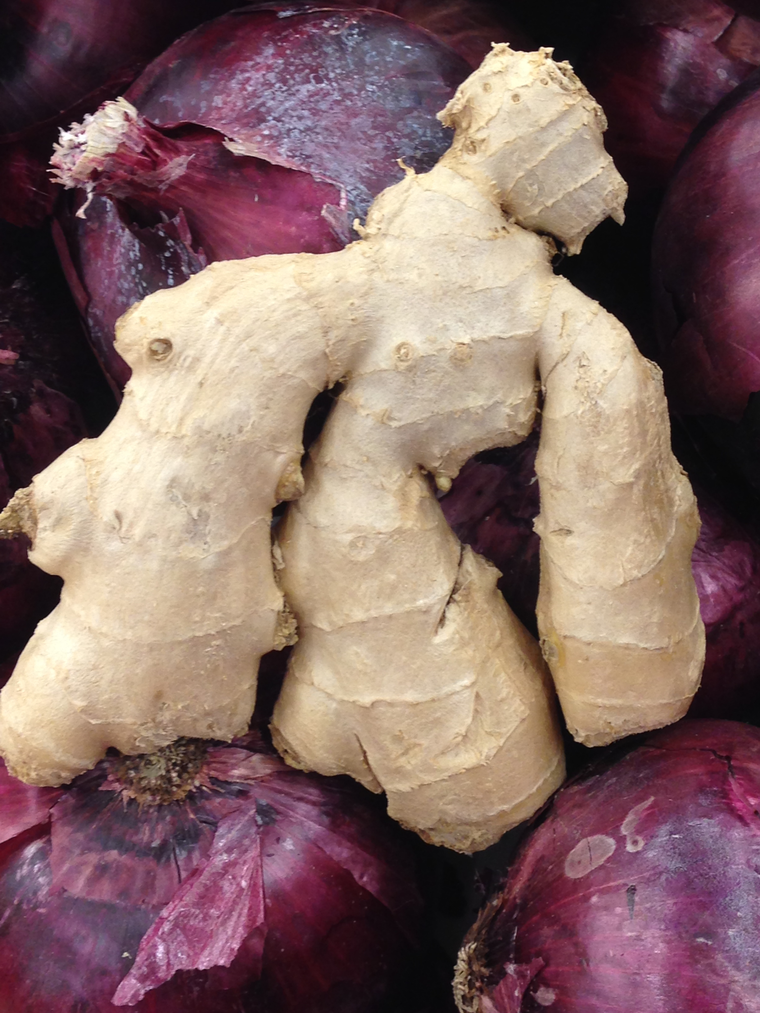 ginger improves pain and quality of live of rheumatoid arthritis