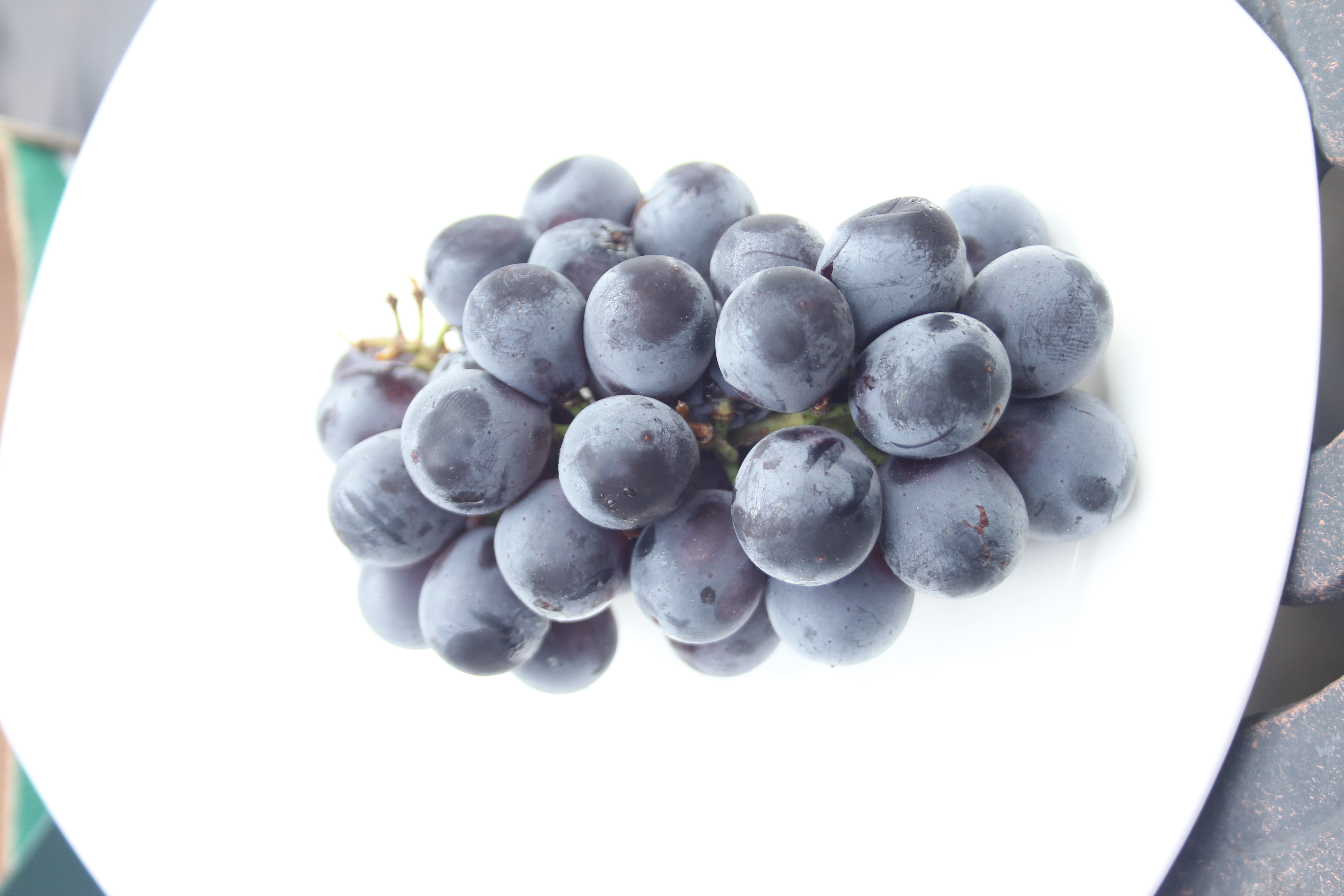 grape seed extract improves cholesterol and cardiovascular risk factors in obese and overweight people