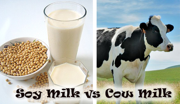 New York Times soy milk prevents osteoporosis cow's milk doesn't